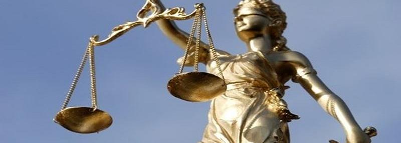 Ngành luật sư