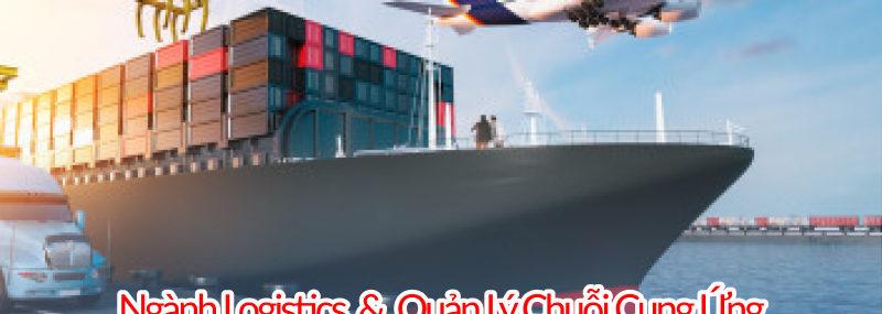 Ngành logistics và quản lý chuổi cung ứng đào tạo mấy năm, thi khối gì, ra trường làm gì, lấy bao nhiêu điểm